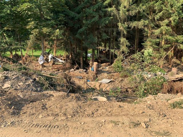 Zerstörte Bäume am Bach von Kirchsahr